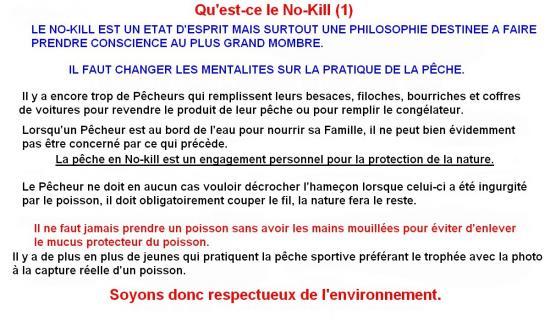 QU'EST-CE QUE LE NO KILL (1)