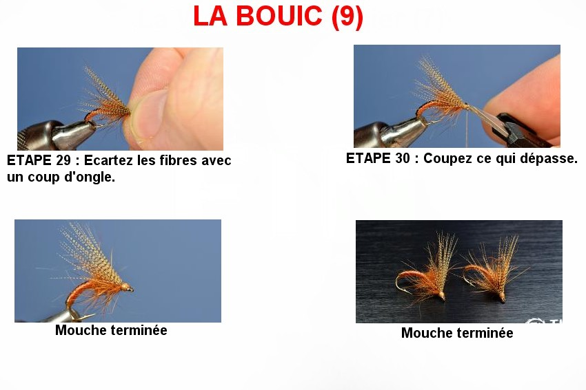 LA BOUIC (9)