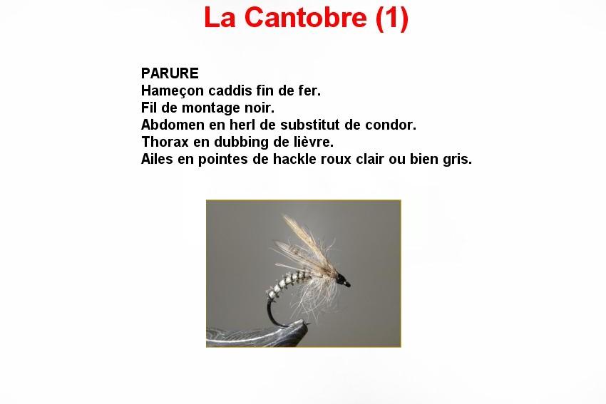 La Cantobre (1)
