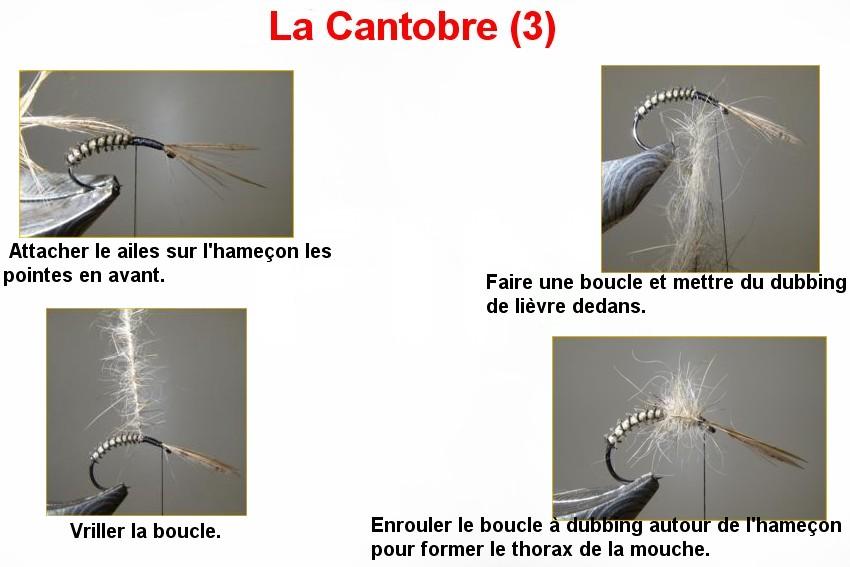 La Cantobre (3)