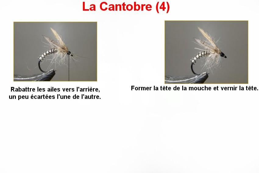 La Cantobre (4)