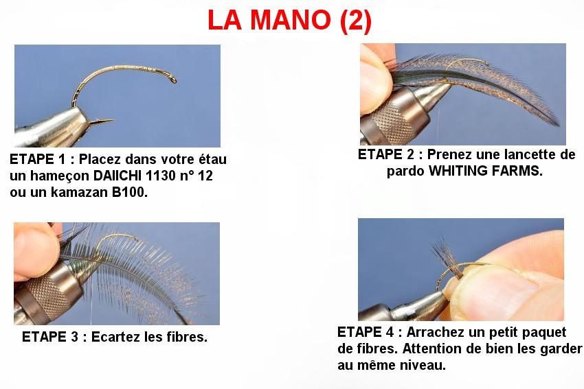 LA MANO (2)