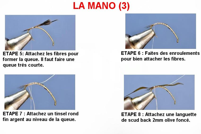 LA MANO (3)