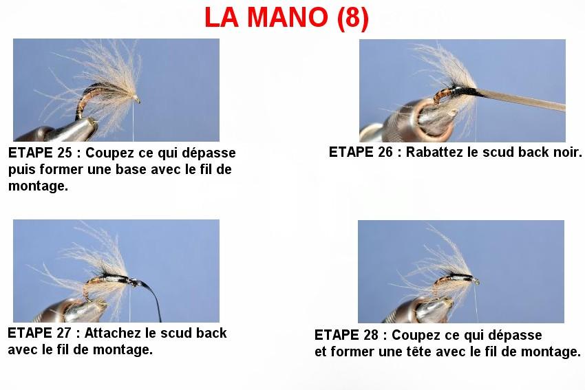 LA MANO (8)