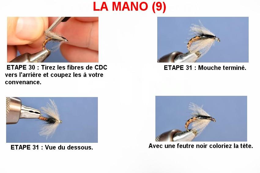 LA MANO (9)