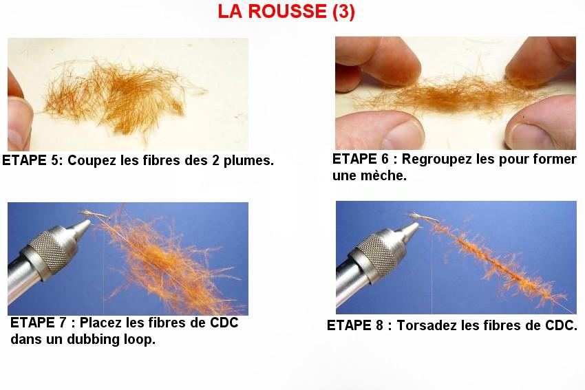 LA ROUSSE (3)
