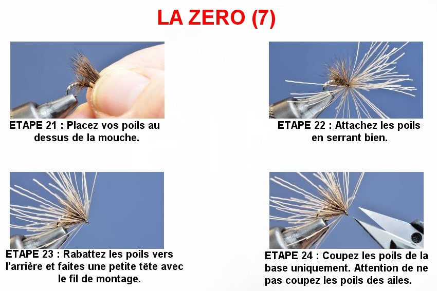 LA ZERO (7)