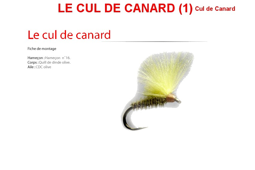 Le Cul De Canard