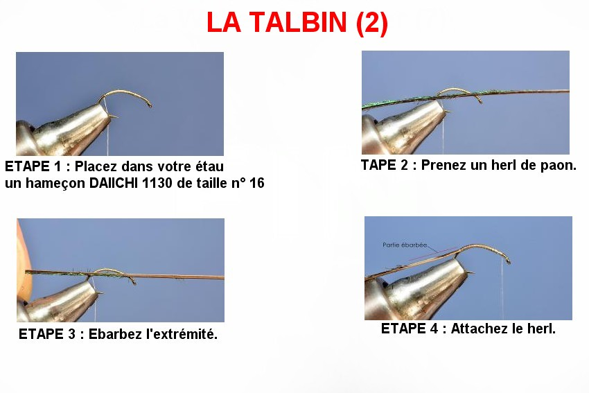 Le Talbin (2)