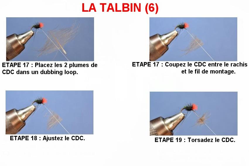 Le Talbin (6)