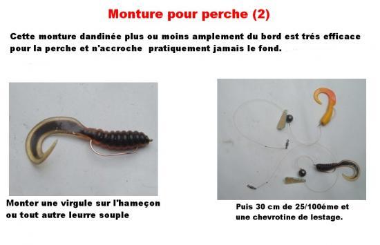 MONTURE POUR LA PERCHE (2)